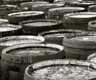 1794 The Whiskey Rebellion american whiskey